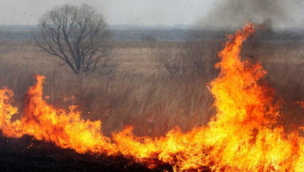 Проблема весенних палов и увеличение количества пожаров