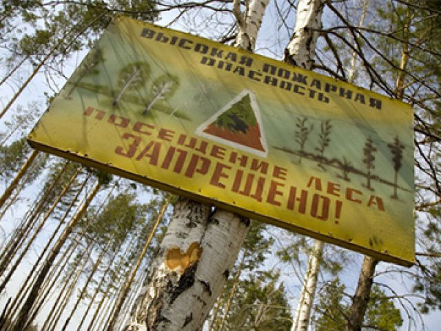 С 1 августа с лесными прогулками придётся повременить