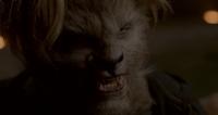 Волки / Wolves (2014)