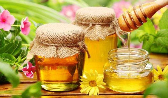 Народная академия пчеловодческого мастерства ждёт всех желающих