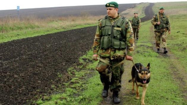 Полоцкие пограничники задержали девять нелегалов из Вьетнама