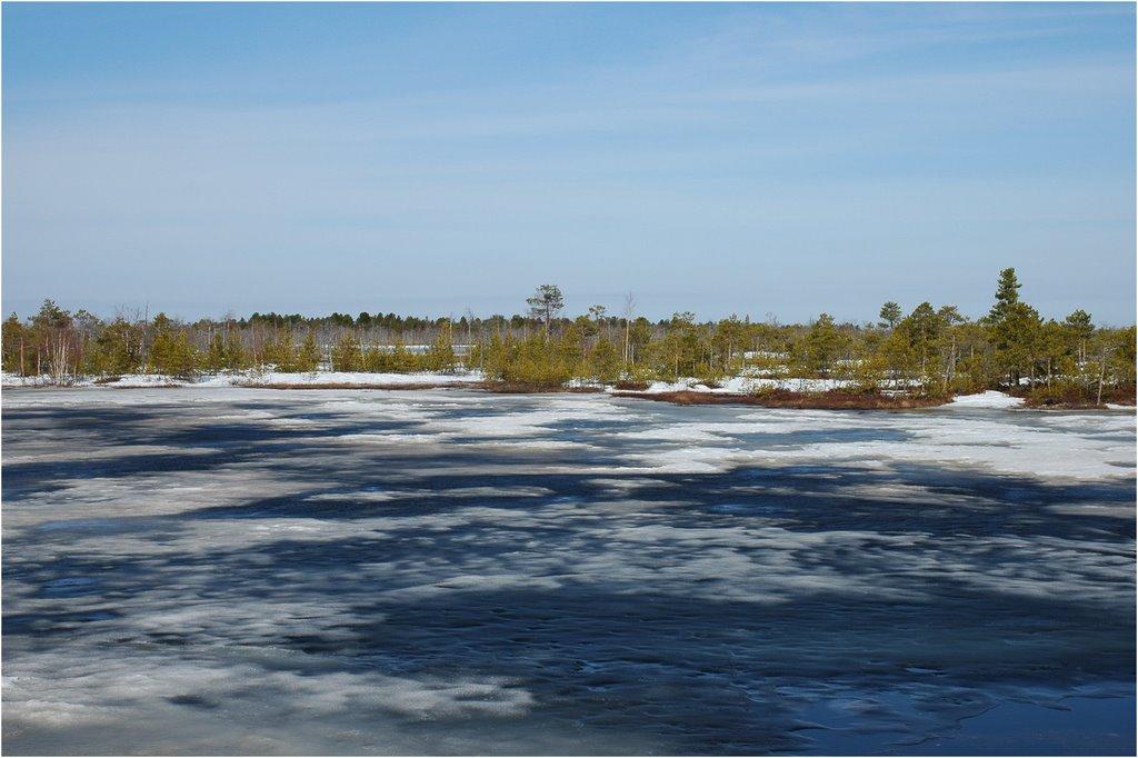 Сводка ОСВОД за март 2015, смертельный лед уносит жизни полочан