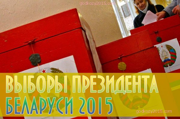 Новополоцк начинает подготовку к предстоящим выборам Президента