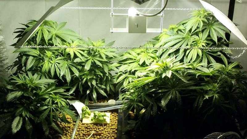 В Полоцком районе обнаружилась замаскированная нарко-лаборатория