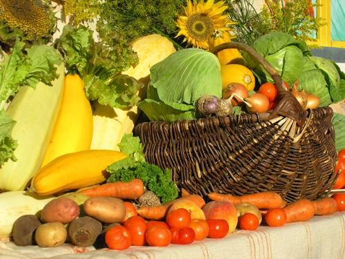 19 сентября в Полоцке проходят масштабные сельхозярмарки