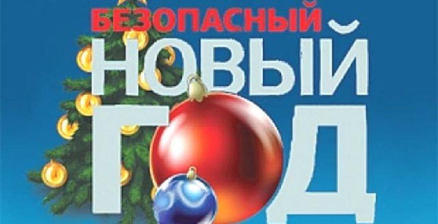 Полоцкий ГРОЧС научил  детей правилам безопасного Нового Года