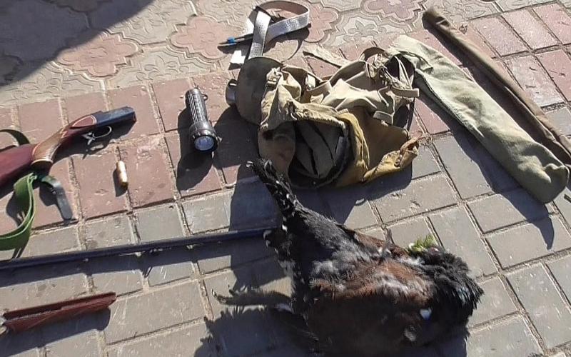 Убившего глухаря браконьера оштрафовали на 42.000.000 рублей