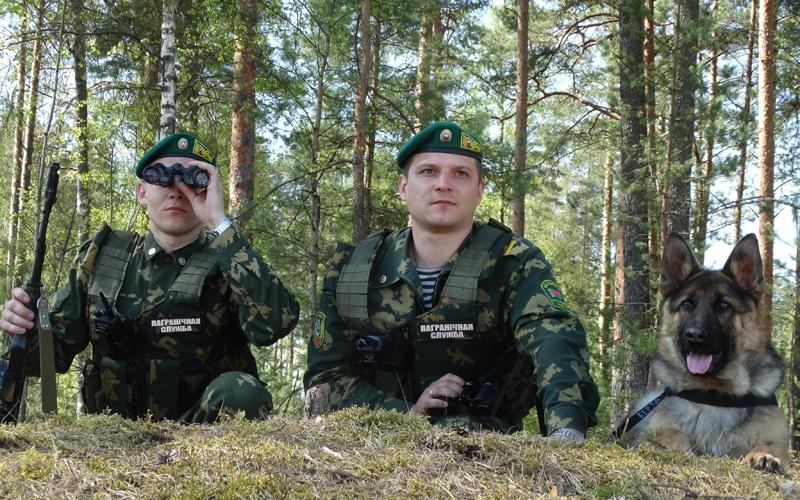 Полоцкие пограничники задержали нелегального мигранта