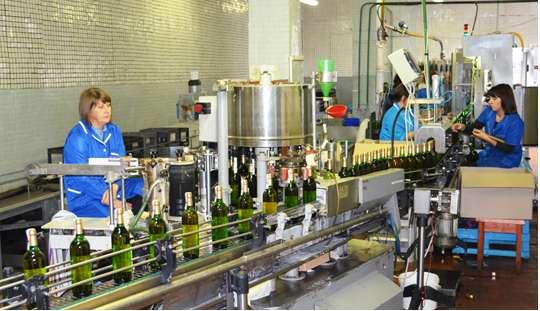 Сотрудники винзавода города Полоцка могут остаться без рабочих мест