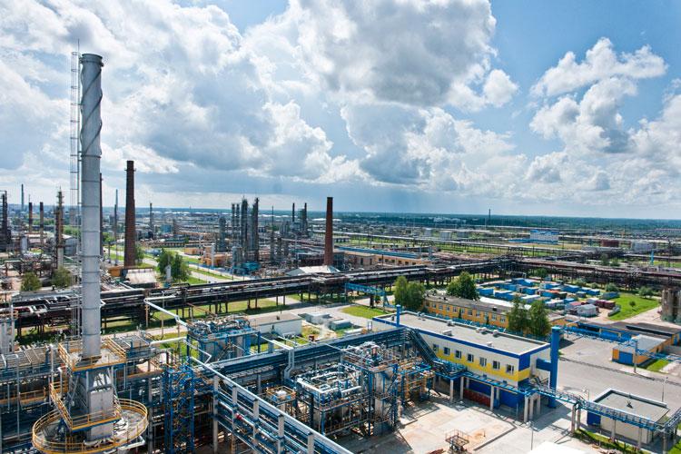 Теплицы завода «Нафтан» выставлены на аукцион
